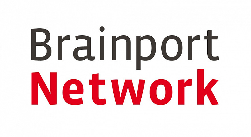 Logo Brainport Network